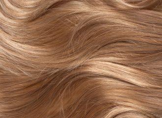 Das Haare Färben eBook für Firseurmeister